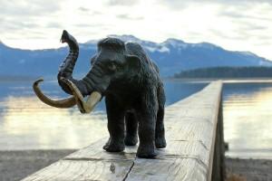 mammoth-240677_1280