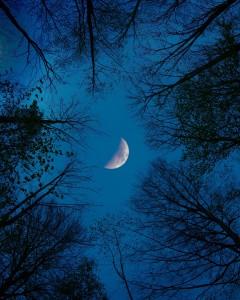 moon-4245432_1920